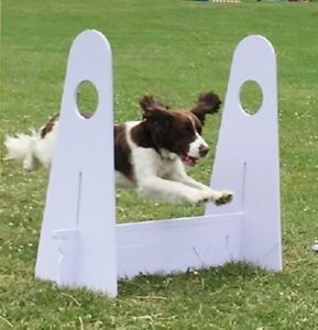 FLYBALL FLY BALL DOG JUMP 8 Section Hurdle - Agility Obedience - For BFA & UKFL