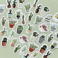 45Pcs Paper Stickers Label Cactus Plants Succulent Diaries Scrapbooking DIY