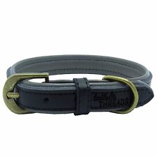 Premium Genuine Leather Soft Padded Dog Collar (Small)