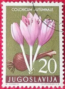 Yugoslavia Stamp   1957   20Din    Flowers     (1324)