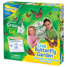 Butterfly garden Live Hatching Kit Bred 5 Butterlies Insect Lore