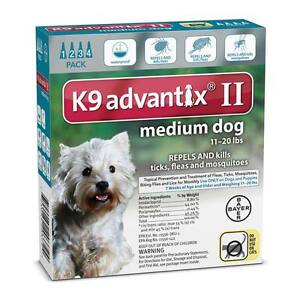 Professional Spot On Topical Flea & Tick Treatment for Dogs 11 to 20 lbs Teal