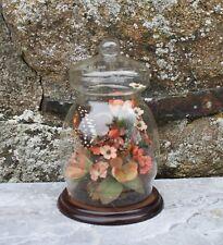 Bocal en verre décor fleurs en tissu et papillon naturalisé vintage taxidermie