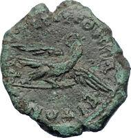 Commodus 177AD Philippopolis in Thrace Genuine Ancient Roman Coin Eagle i73637