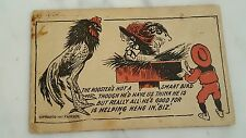 Antique Postcard Posted 1909 Rooster's Not A Smart Bird...