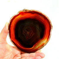 Orange Agate Slice Extra Large Banded Geode Slice 13cm x 13cm Polished