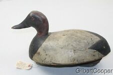 CANVAS BACK DRAKE WOOD DECOY - BY FRED A PLICHTA - 1891 to 1942