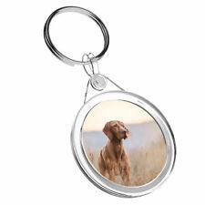 1 x Hungarian Pointer Vizsla Dog - Keyring IR02 Mum Dad Kid Birthday Gift #12566