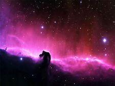 SPACE NEBULA HORSEHEAD GAS CLOUD STAR LARGE POSTER ART PRINT BB3257A