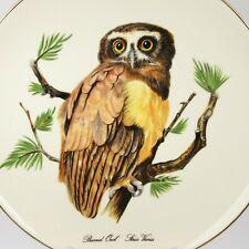 Vintage Barred Owl Decorative Plate Gold Trim Edgewood Fine China Usa