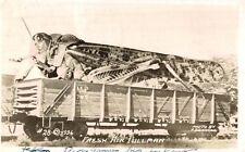 RPPC,Exaggeration Postcard,Giant Grasshopper ona R.R.Car,Conrad PHoto,c.1945-50