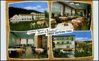 REICHELSHEIM Ober-Ostern AK Gasthof Pension Ostertal AK alte Postkarte