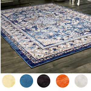 5X7 Living Room Rug Modern Vintage Traditional Carpet Pet & Kid Friendly