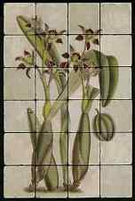 1624 Orchid Backsplash Mural Tumbled Marble Tiles Kitchen Ideas