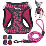 Breathable Small Dog Harness Leash set Reflective Step in Dog Cat Walking Vest