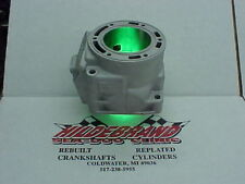 Arctic Cat F-6 Snowmobile Cylinder *Re-Plated*