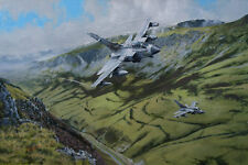 Panavia Tornado XIII 13 Squadron Aircraft Aeroplane Painting Aviation Art Print