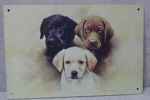 3 Adorable Labrador Puppies Metal Sign