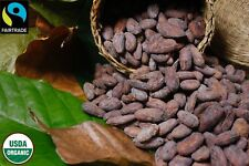 Raw Cacao Cocoa Beans USDA Organic