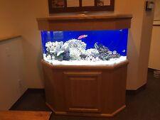 60-Gallon Acrylic Aquarium w/oak furniture