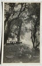 Postcard Bush Gardens. Pasadena 1942 RPPC