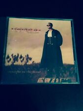 Damion Hall - CD *Straight To The Point* R&B* Satisfy You* 1994
