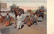 Turkey Merchants Camels Carrying Olive Wood Antique Postcard (J30674)