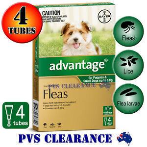 Advantage Green 4 for Puppies & Small Dogs Up To 4 kg -  4-Pack - Puppy Flea