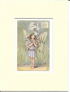 Cecily Mary Barker THE LADY'S SMOCK FAIRY Mounted Vintage Print 1920s