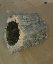 Mini pure Virgin Cork Bark tube (Terrarium/Vivarium/Bonsai/Aquarium/Orchids)
