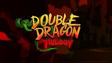 Double Dragon Trilogy - Region Free Steam PC Key Fast Delivery