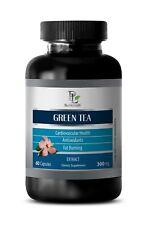 weight loss powder - GREEN TEA 300MG 1B - weight loss pills