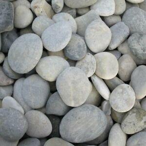(3,32€/kg) 3Kg Zierkies Flusskiesel rund 30/50mm zum bemalen | basteln Steine