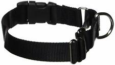 "PetSafe Martingale Dog Collar with Quick Snap Buckle, Medium (Nylon Width 1"")"