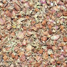 Dried Red Clover Flowers 50g - 1kg, Rabbit Treat, Reptile Food, Tortoise, Degu