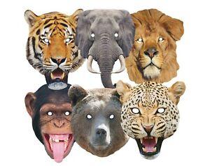 Animales Salvajes Variedad 2D Tarjeta Fiesta Máscaras 6 Pack Incluye León, Tigre