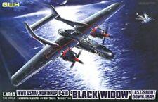 """GreatWall L4810 1/48 Northrop P-61A Black Widow """"Last Shoot Down 1945"""""""