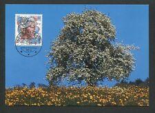 Svizzera MK 1986 EUROPA CEPT ALBERO maximum carta carte MAXIMUM CARD MC cm d9078