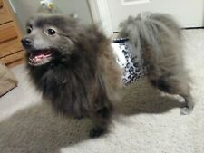 """""""Cumber-Blunder"""" Belly Band for Male Dogs - Snow Leopard Polar Fleece - S"""