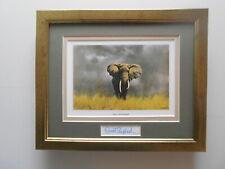 David Shepherd print 'Wise Old Elephant' original signature in the mount