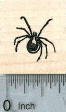 Small Spider Rubber Stamp, Halloween Series A33014 WM