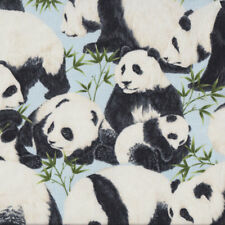 Panda Bears on Light Blue Bamboo Wildlife Quilting Fabric FQ or Metre *New*