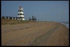 393094 Cedro dunas Westpoint A4 Foto Impresión