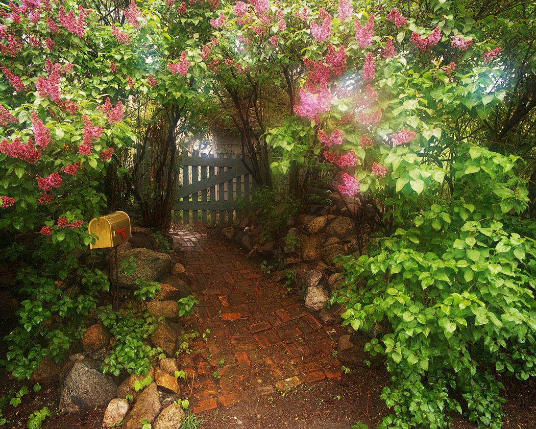 Gilligan's Gate