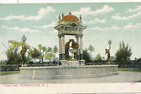 SOMERVILLE NJ – Duke's Park – udb (pre 1908)