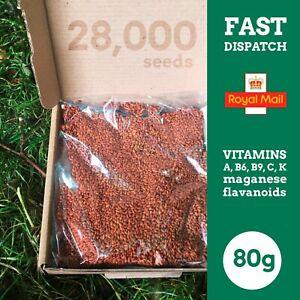 28,000 Cress Seeds Common / Plain 80g
