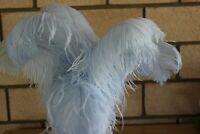 """Ten (10) white first grade ostrich small wing feather 375-425mm (15-17"""")"""