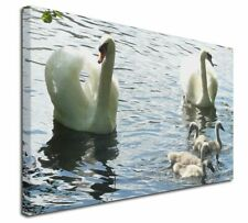 More details for swans and ducks x-large 30
