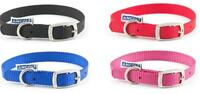 Ancol Nylon Dog Puppy Collar - Pink (Raspberry) Blue Red Black Collars
