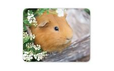 Ginger Guinea Pig Mouse Mat Pad - Pet Animal Cute Rodent Computer Gift #15240